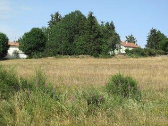Terrain, Grand terrain de 9000 m² dans le secteur de Langogne Ville