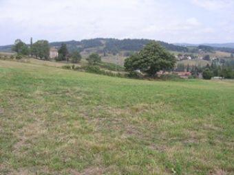 Terrain constructible de 900 m²