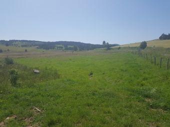 Terrain, Terreain constructible de 4 000 m² avec CU dans le secteur de Châteauneuf de Randon