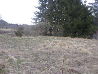Terrain, Terrain de loisirs  de 1600 m² dans le secteur de Coucouron