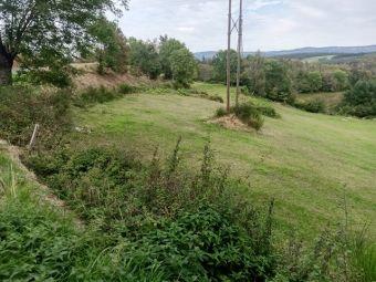 Terrain, Joli terrain consctructible dans le secteur de Langogne Campagne