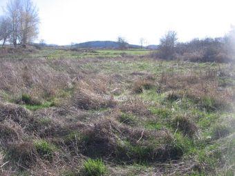 Terrain, Terrain de 2400 m² avec CU  dans le secteur de Le Brignon - Solignac