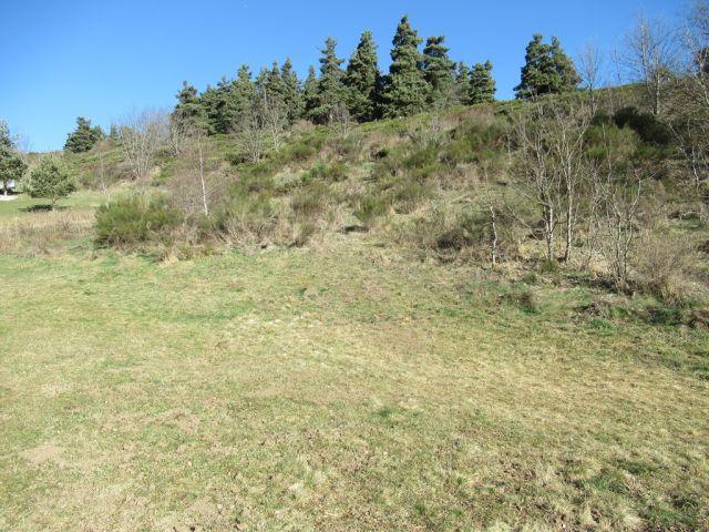 Terrain, Joli terrain constructible de 6930 m²  dans le secteur de Langogne Campagne